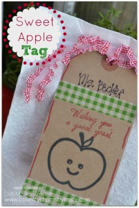 {Sweet Apple Tags} Gift Bag Idea